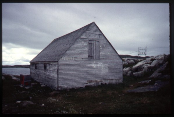 boasthouse-hopedale-labrador